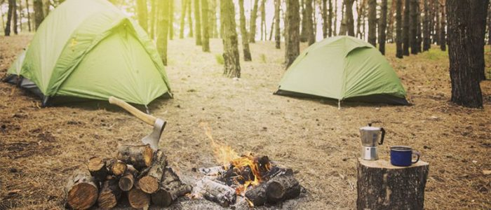 Tent or Hammock: The Main Differences